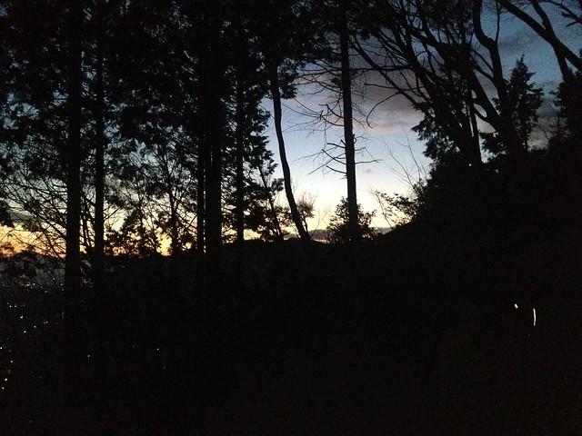 城山 猿啄城展望台 登山道