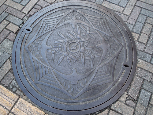 Peace Doves Artwork on Hiroshima metal Manhole cover #1