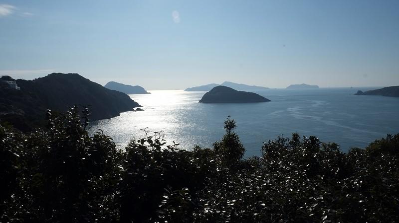 Camellia Island, Korea