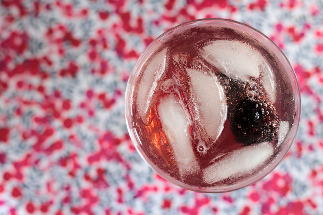 Williams Sloe and Mulberry Gin and Tonic