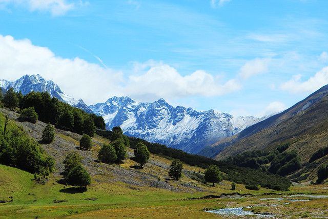 High Country Fly Fishing New Zealand