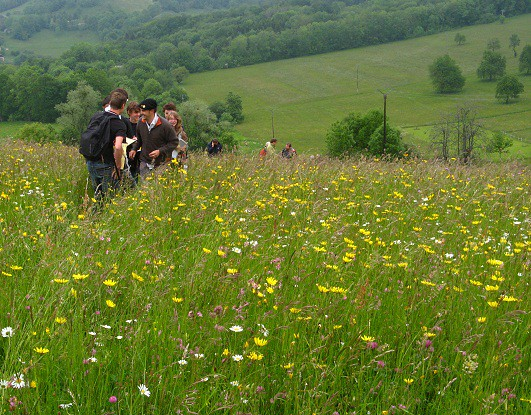 Jury élèves prairies fleuries 2015