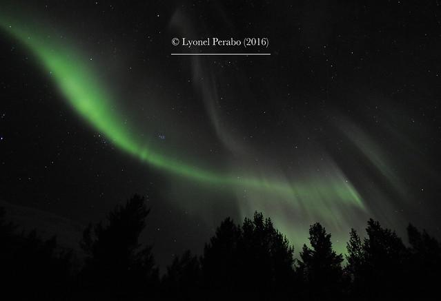 Northern_Lights_20_12_2016_II