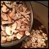 #SundayGravy #sugoDomenica #homemade #CucinaDelloZio - then the cremini mushrooms