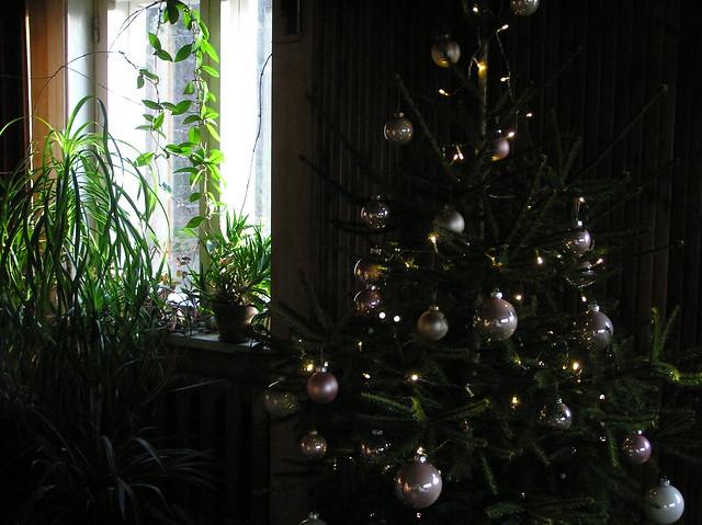 Christmas Day 2016