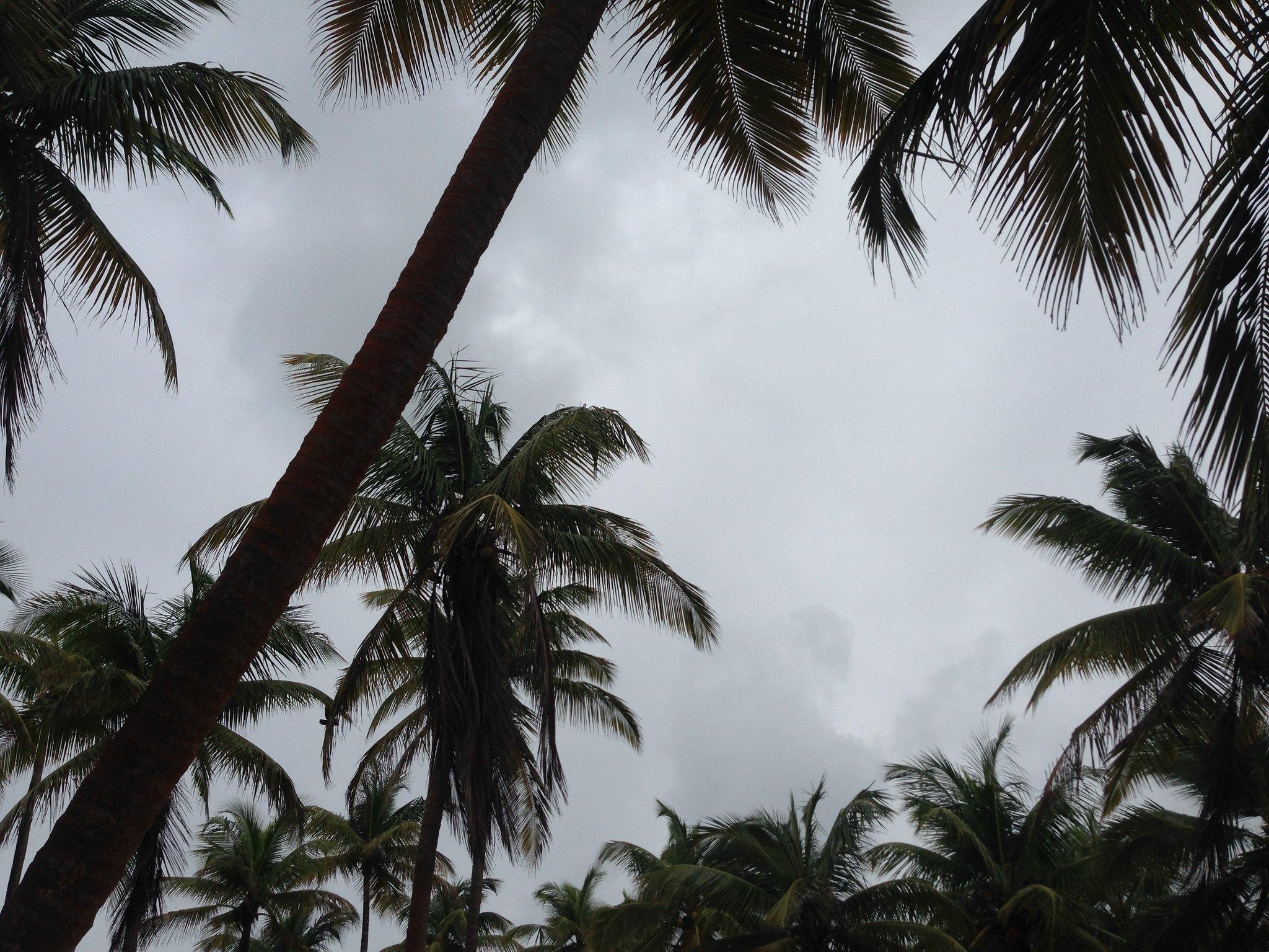 La Campagne Tropicana, Lagos, Nigeria #tb #summer