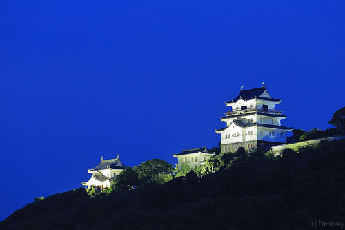 Hirado Castle at Night