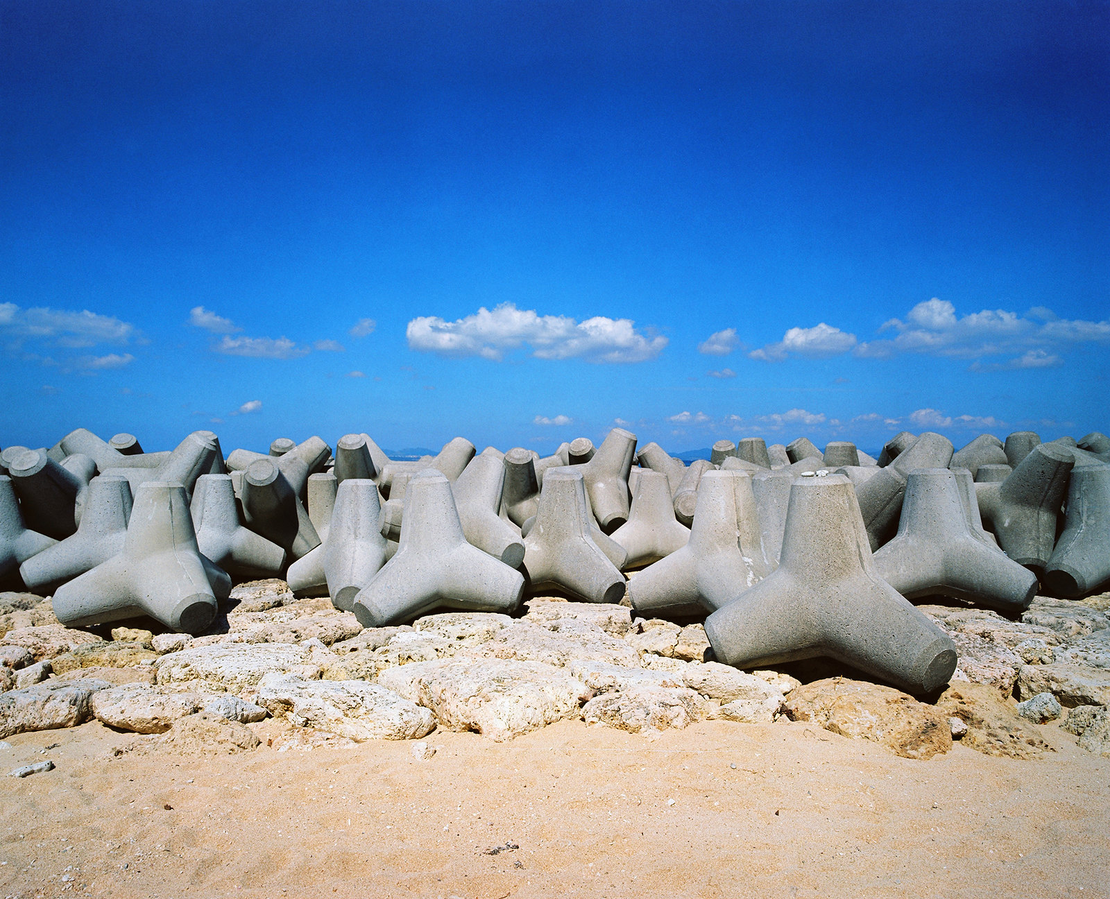 More Tetrapods