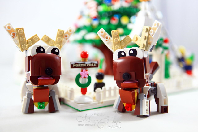 CHRISTMAS TREE & REINDEER