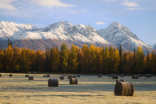 Farming in Alaska | by akphotograph.com