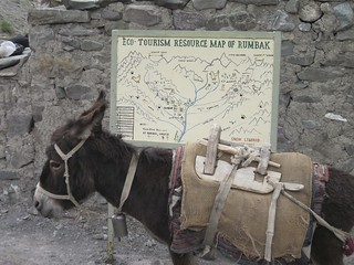 Eco-tourism resource map of Rumbak Village in India...and a donkey | by Panthera Cats