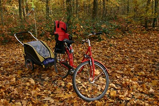 Bike in leaves I | by tillwe