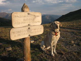 2007-09-08_34_kuzca_poses_at_the_border_of_rocky_mountain_national_park