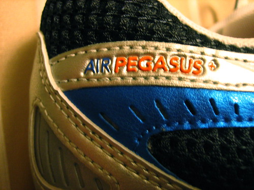 Nike Pegasus Running Shoe Review