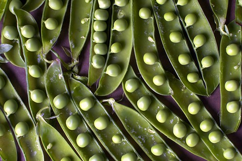 peas in pods and then more pods | by smitten kitchen