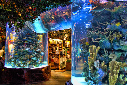 Rainforest Cafe | by Gary Burke.