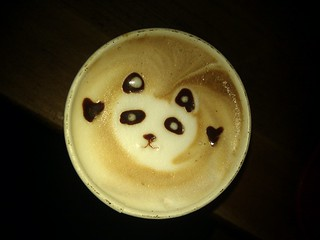 Morning panda | by selena marie