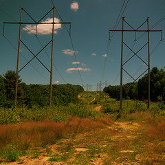 eletrical towers | by mcollins123