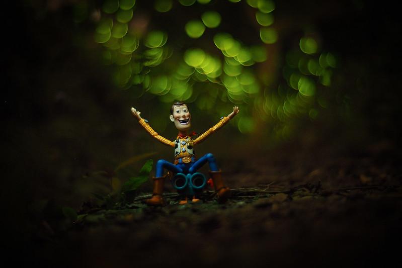 Woody & Firefly|螢火蟲 胡迪來了