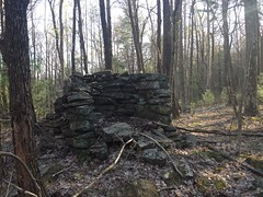 Adams Bald Ridge Homestead Ruins