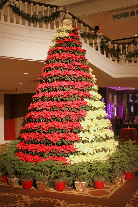 Christmas Tree at Opryland Hotel lobby 2015