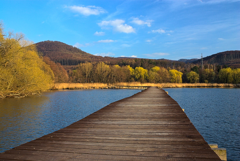 Bobria hrádza (Beaver dam)