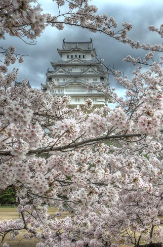 Himeji Castle area on APR 05, 2016 vol (1)