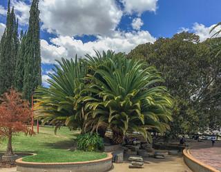 Zoogarten Windhoek