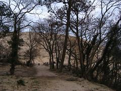 Duna di Pilat