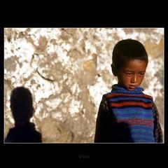 'Ladakh Shadow'
