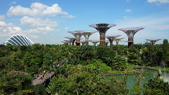 20170405_160035 Gardens by the Bay