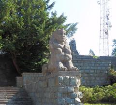 Avala