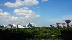 20170405_155718 Gardens by the Bay