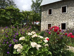 Guesthouse in Theth Albania.