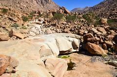Hiking in the Brandberg, Namibia