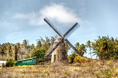 Morgan Lewis Windmill
