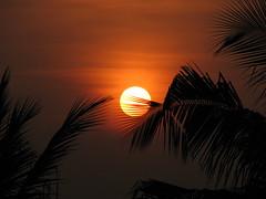 Sunrise by Sriniv