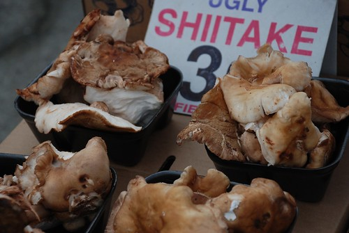 """ugly shiitake"" at embarcadero market 