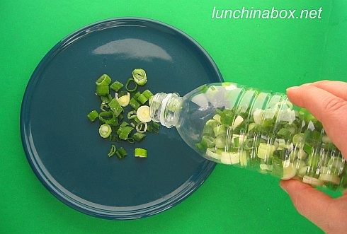 Speed tip: Freeze chopped green onions in plastic drink bottle | by Biggie*