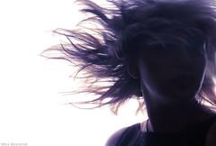 wind  2 by Mitra Mirshahidi-