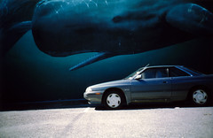 the whale and the car | by MrLomo