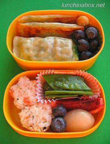 Rectangular mandoo bento lunch for preschooler | by Biggie*