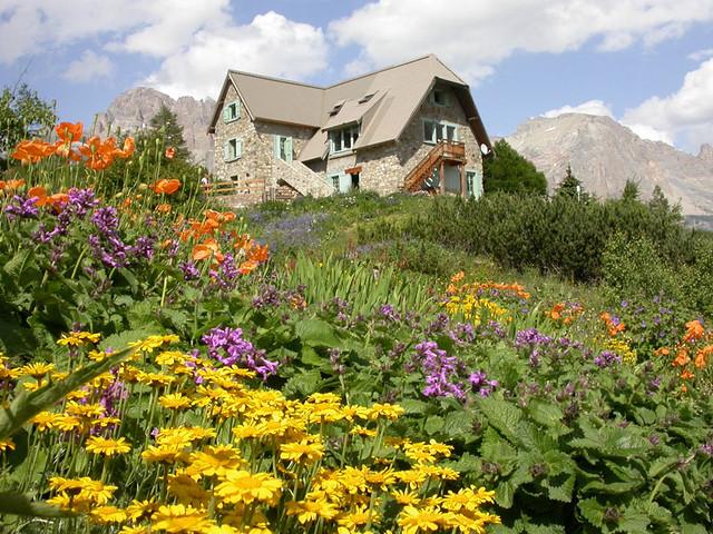 Images Pour Impression Jardin Botanique Alpin Du Lautaret