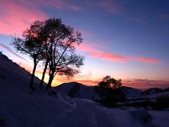 Cold Silence! by AmirBayat