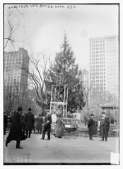 Xmas tree in Madison Sq. Park, N.Y.C.  (LOC) | by The Library of Congress