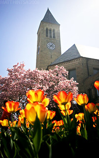 Spring @ Cornell | by matt.hintsa