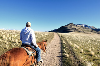 Antelope Island Horse Ride - April 12 2008 | by a4gpa