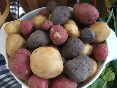 Potatoes from Flying J Farms | by swampkitty