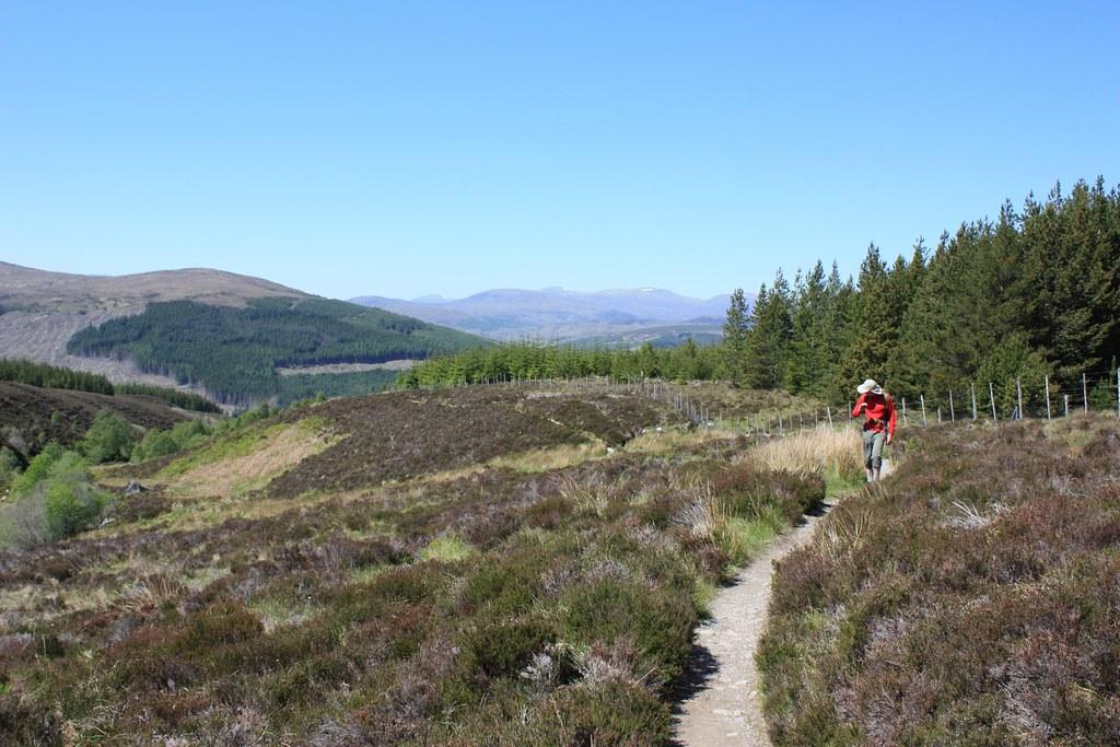 Il sentiero che porta al Ben Wyvis