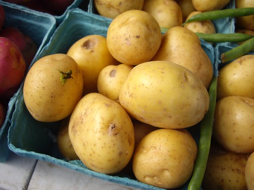 Potatoes from HW Organics | by swampkitty
